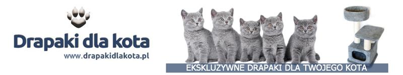 Drapaki dla kota - baner 5 jpg - 800 x 150